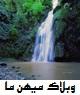 http://mihanma.persiangig.com/image/Golestan/mino.jpg