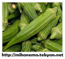 http://mihanma.persiangig.com/image/Hormozgan/ejtemaee%26eghtesadi.jpg