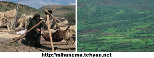 http://mihanma.persiangig.com/image/Kordestan/shahrestanha%28ashayer%29.jpg