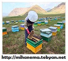 http://mihanma.persiangig.com/image/Lorestan/ejtemaee%26eghtesadi.jpg